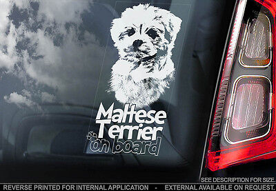 Maltese Terrier - Car Window Sticker - Dog Sign -V01