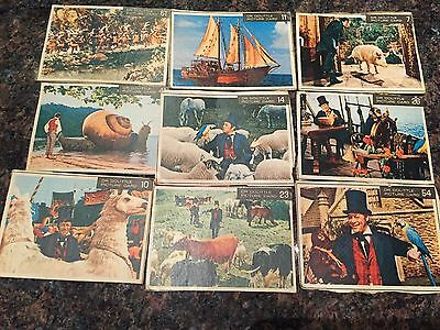 Dr. Dolittle Picture Card Lot of 17 Cards