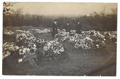 PRETORIA PIT DISASTER Graves of the Victims, RP Postcard 1910