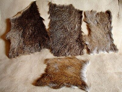 4 Deer Hide sections-Stretched and Mount Tanned-Craft/Leather/Multi-Purpose Use