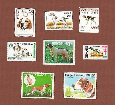 Pointer dog postage stamps set of 8 MNH