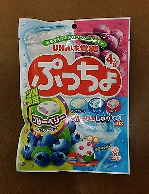 UHA Puccho Assorted Flavor Mix 4 Chewy Candy