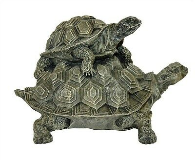 Double Turtle Key Safe ~ Available in 26 Colors