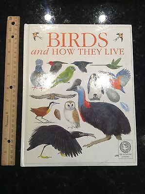 Birds and How They Live (Windows on the World) hardcover book