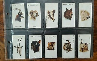 Wild Animals' Heads Set Of 50 Cigarette Cards 1931 John Player