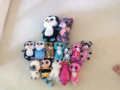 Selection of TY Beanie Animals