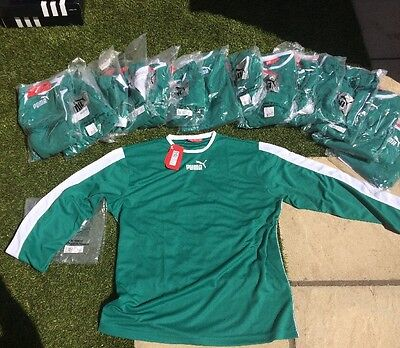 Puma Esito Green Football Shirts - Size L x15 Shirts
