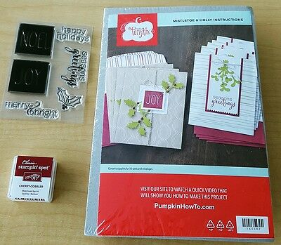 Stampin Up Paper Pumpkin Mistletoe and Holly Card Kit NEW with Stamps (Nov 2015)