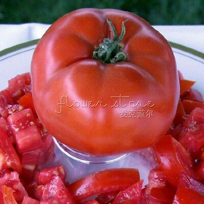 Free Shipping 20 Beefsteak Tomato Seeds Resistant to Pest Indoor Outdoor 3