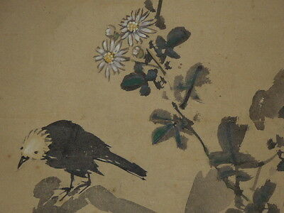 Hanging Scroll Japan Picture Japanese Painting Old Chrysanthemum Asian Ink i42
