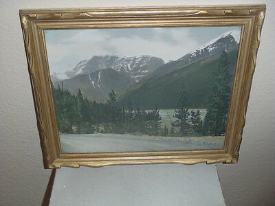 """Vintage J. FRED SPALDING HAND COLORED PHOTO S ALBERTA 16 x 13"""" Snow Dome Mt"""