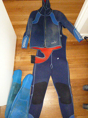 Diving suit with flippers