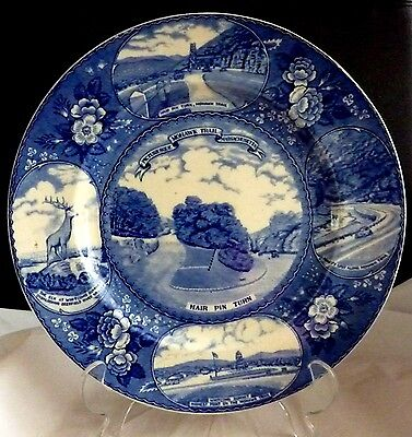 Old English Adams Staffordshire ware blue & white plate