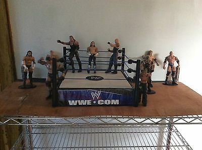 WWE Wrestlers and Ring