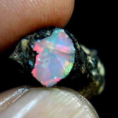 7.00 Cts Natural Ethiopian Welo Fire Opal Rough Gemstone Rare Play of Color Gems