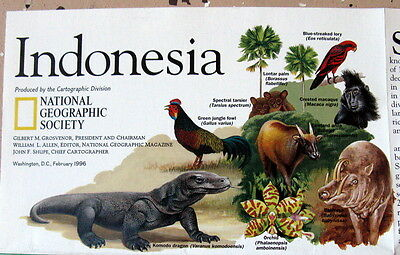 Indonesia -- National Geographic Map / Poster Feb 1996