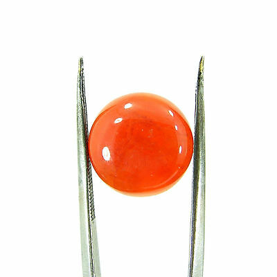 7.50 Ct Beautiful Natural Cabochon Orange Carnelian Gemstone Stone - 8652
