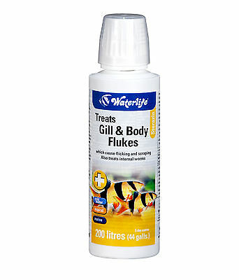 Waterlife Sterazin Treats Gill and Body Flukes & Parasite Cure 100ml Bottle