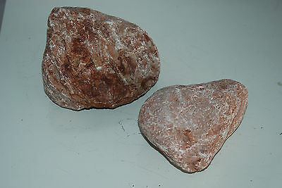 Natural Aquarium Stunning Tahiti Stone Suitable For All Aquariums 1