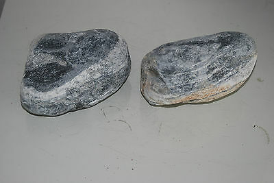 Natural Aquarium Stunning Bermuda Stone Suitable For All Aquariums 1