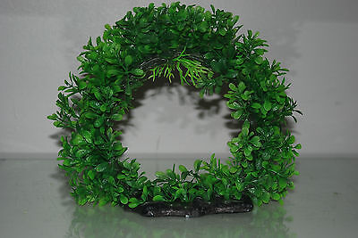 Aquarium Realistic Large Green Ring Plant 22 x 8 x 21 cms For All Aquariums