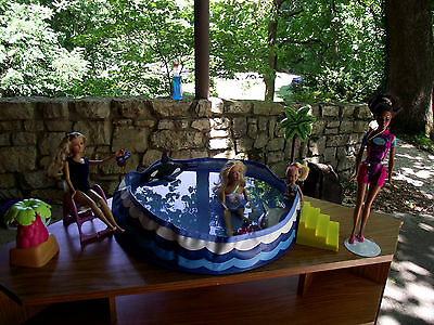 Barbie dolls swimming pool and accessorys lot