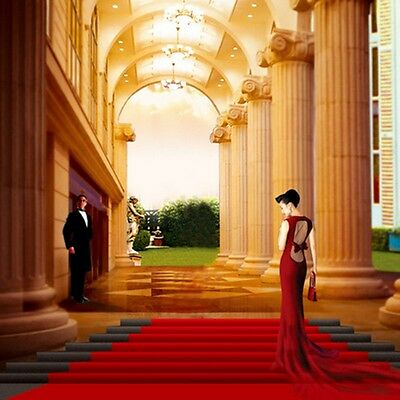 16ft Red Carpet Party Celebrity Floor Runner - Scene Setter Decoration Prop