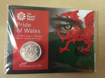Royal Mint 'Pride Of Wales' £20 Coin