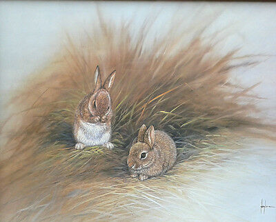 Framed print of Rabbits by Mike Nance