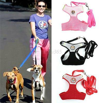 Dog Soft Lead Leash + Harness Girth Vest With Strap For Pets Dogs Cats Puppy