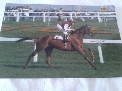 """Photo,  """"OH  SO  SHARP"""" and  """"STEVE  CAUTHEN"""" signed"""