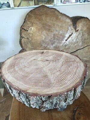 "12"" Rustic Log slice, wooden wedding cake stand, stepping stones, Centre Piece"