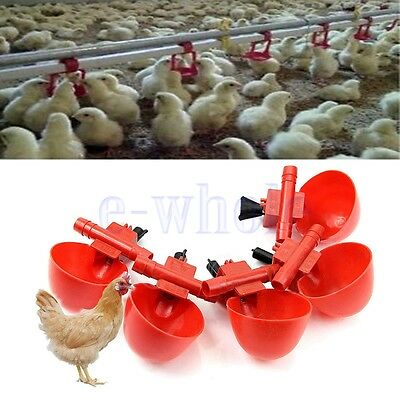 5 Pack Poultry Water Drinking Cups- Plastic Chicken Hen Automatic Drinker HM