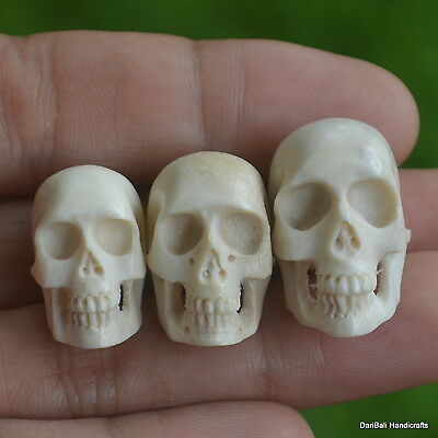 Skulls Carved Beads 3pcs Assorted Size 19-23mm in Height SK288 in Antler Carving