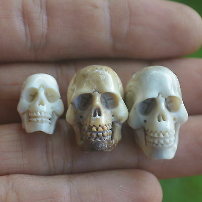 Skulls Carved Beads 3pcs Assorted Size 16-23mm in Height S295 in Antler Carving