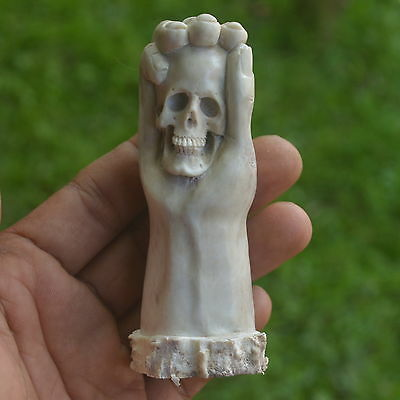 Skull in Hand Carving 93mm Height T185 in Antler Hand Carved