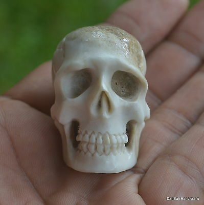 Skull Carved Beads 1pcs 38mm in Height S292 in Antler Carving