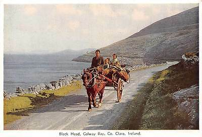Black Head, Galway Bay Co. Clare Horse Carriage