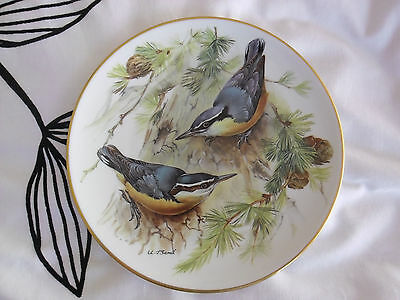 WWF Songbirds of Europe -  Ursula Band Limited Edition Plate Corsican Nuthatch