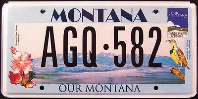 LPS MONTANA OUR MONTANA BIRD FLOWER Graphic License Plate FREE US SHIPPING