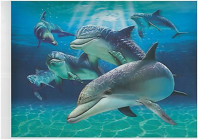 Dolphin 3D Lenticular raster Holographic Stereoscopic Picture Wall Art