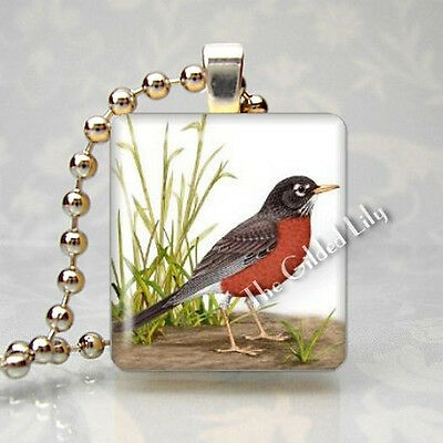ROBIN RED BREAST BIRD Scrabble Tile Altered Art Pendant Jewelry Charm