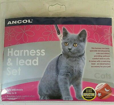 Ancol cat harness