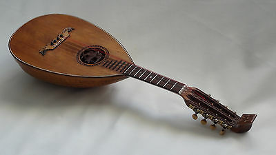 Mandolin Lute Shaped with Nylgut Strings