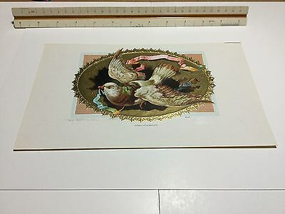 Stock Untitled Inner Cigar Box Label Pigeon E. Moehle Litho Brooklyn NY Gilded