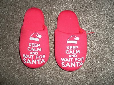 Childrens Christmas Slippers Size 10-11 New