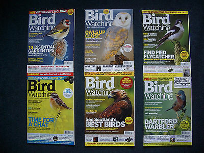 2012 Bird Watching Magazines  Feb - July. Excellent Condition.