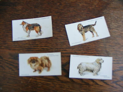 John Players Cigarette Cards Dogs Part  Set 4 Of 50