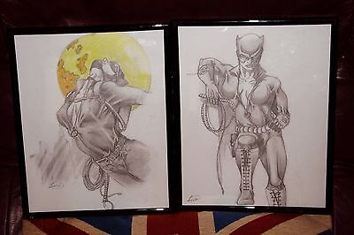 "two pencil drawings of catwoman in frames 8"" x 10"""