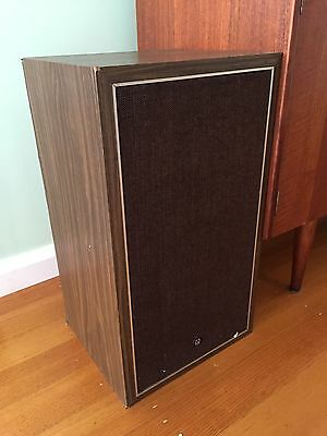 Vintage Retro Pioneer Speakers Timber Effect